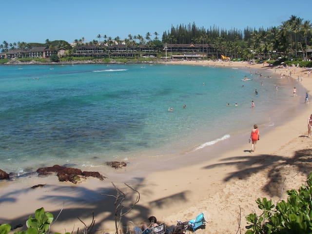 Napili Shores:1BR:Steps to beach/snorkel/SUP&Golf! - ラハイナ - コンドミニアム