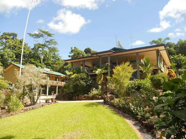 Licuala Lodge - Rainforest Accommodation - Wongaling Beach - Bed & Breakfast