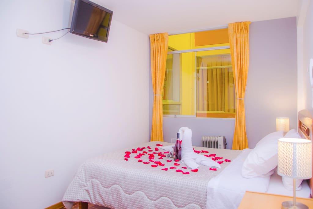 Habitación Matrimonial con baño privado cama de 2 plazas ,Calefacción,wifi,tv cable,Rooms Service .Una experiencia unica
