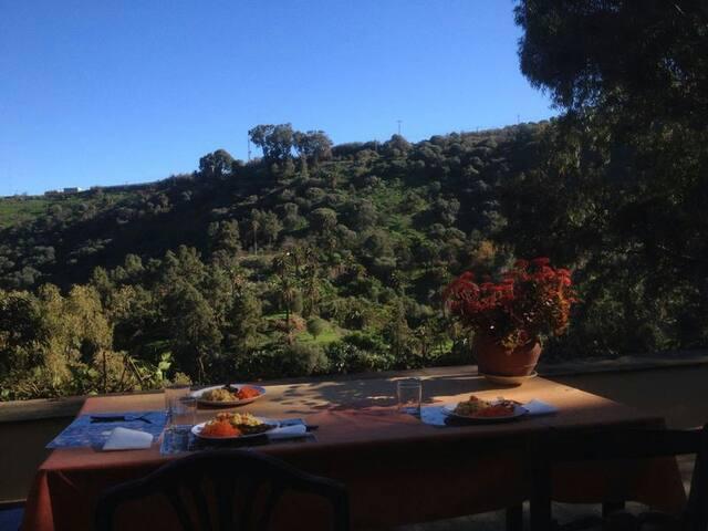 Dining at the terrace/Cenando en la terraza