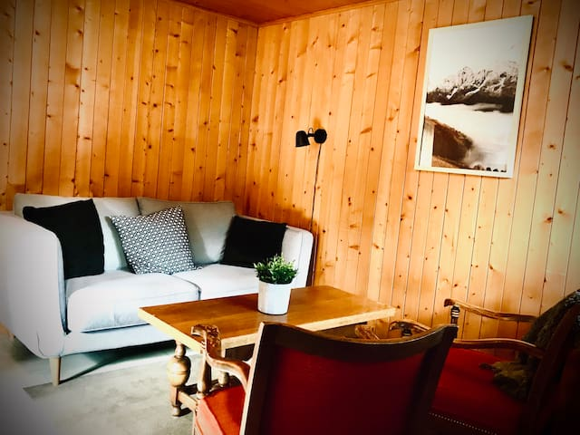 Charming  3 beds flat in typical Swiss Chalet