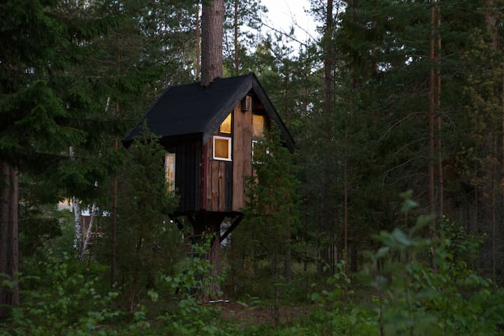 Pine Top Tree House