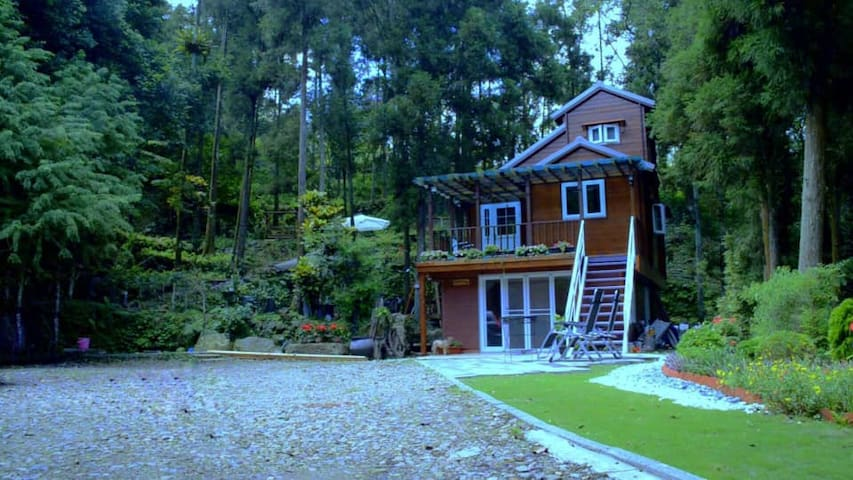 The Tree And Sky Forest BNB