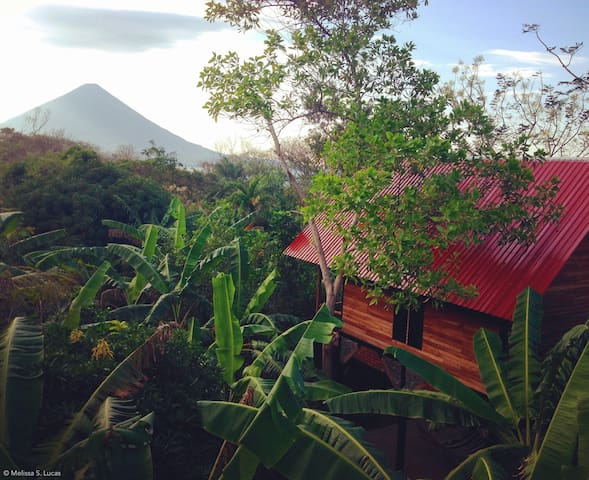 Luxury Treehouse w/Volcano View - Mango House