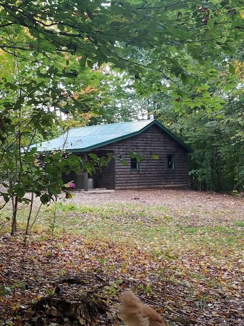 Western New York Cabin Getaway