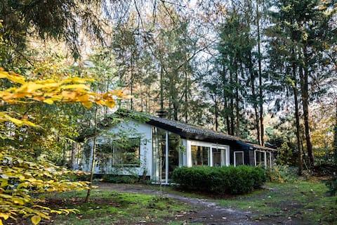 Romantisch en knus boshuisje