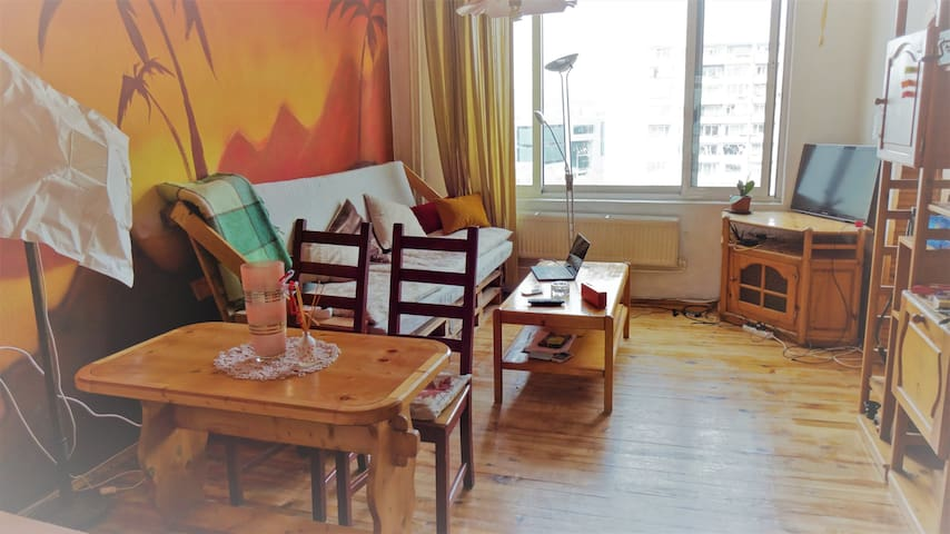 Artistic house with speed WIFI - Sofia - Apartment