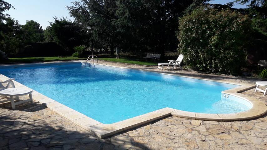 Puglia, Villa (5.000 mq) con piscina