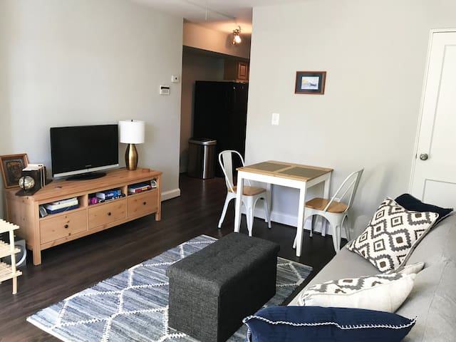 One bedroom apartment in thehistoricdistrict