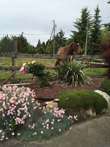 Fantastic Family Farm