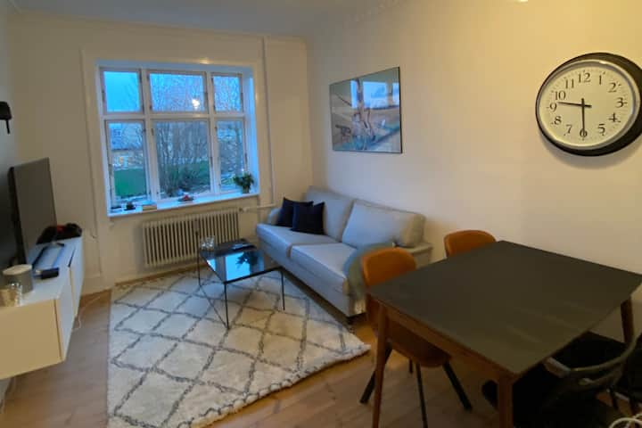 Cozy modern apartment, 4 minutes walk to the train