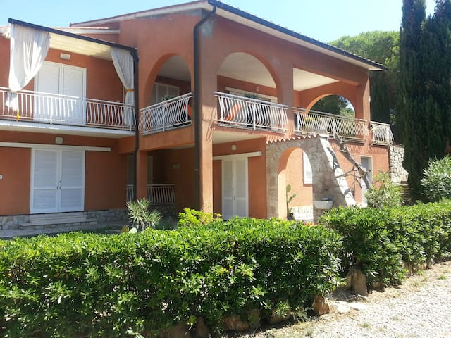 Elba - Kiwi, Bilo verde sole e mare - Capoliveri - Appartement