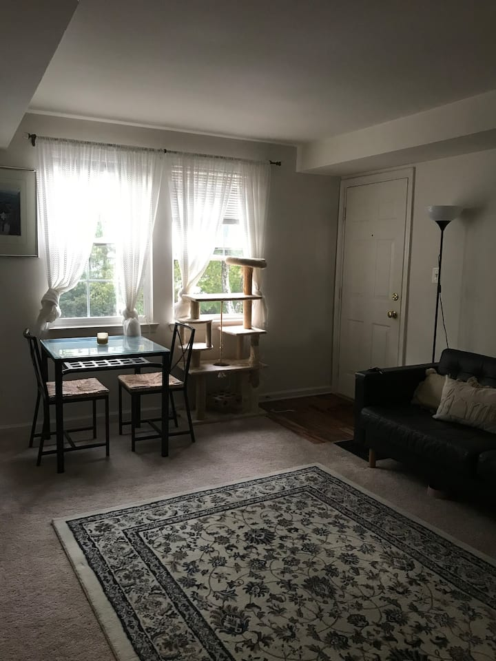 2B, 2B Apartment in Bethesda, MD (Walk to Metro)