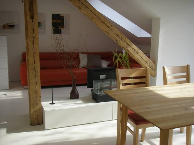 Moderne Wohnung im Altbau