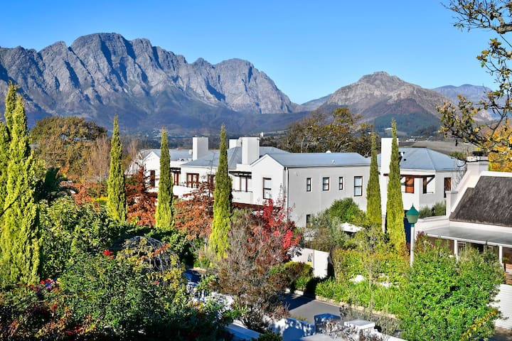 Luxury Apartment in Franschoek