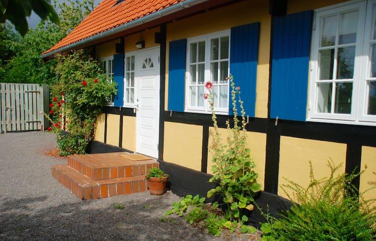 Romantic garden close to Balka beach