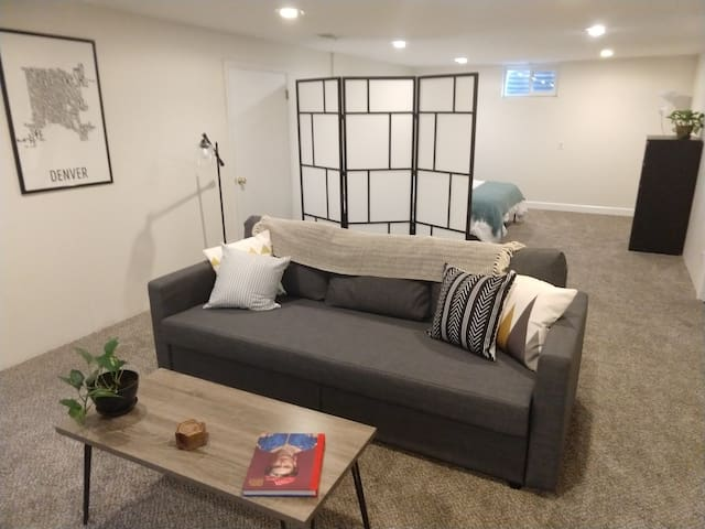 Spacious and Private Basement Level Suite Near DU