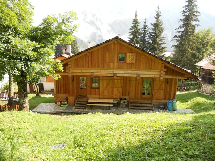 Treetop chalet with amazing lookout on Civetta!