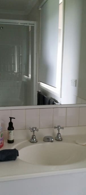 Shower wash basin with separate toilet