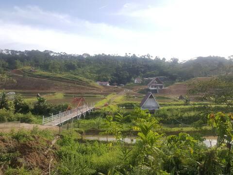 Berlibur dalam suasana pertanian dan perikanan