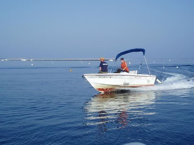 The discount card gives you discounts on boat rentals.