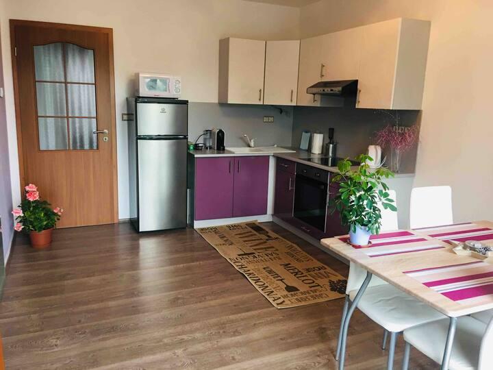 New apartment in Felsölövér