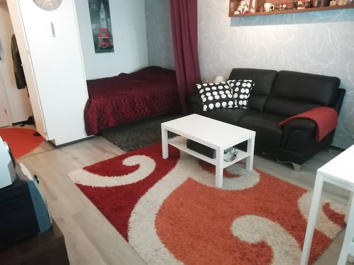 Nice one room flat in city center. Near university