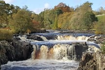 Low Force, Bowlees