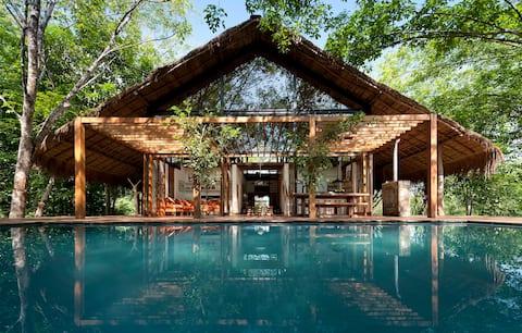 Šrilankansko tropsko odmaralište