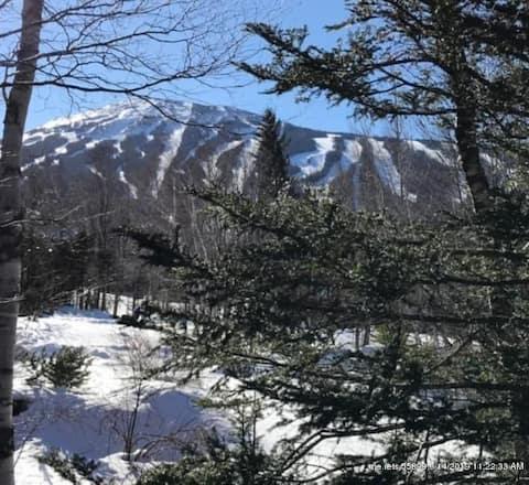 Heart of Sugarloaf! Ski in ski out at Sugartree!