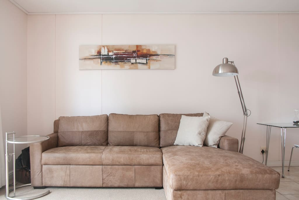 Comfortable leather couch with daybed
