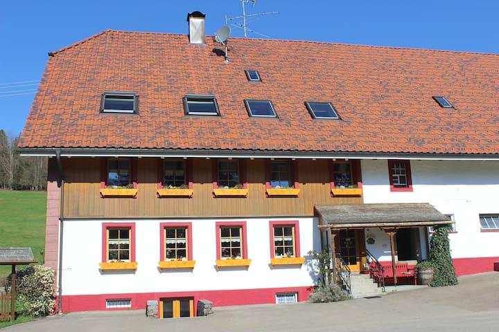 Vor dem Schwyzerhof