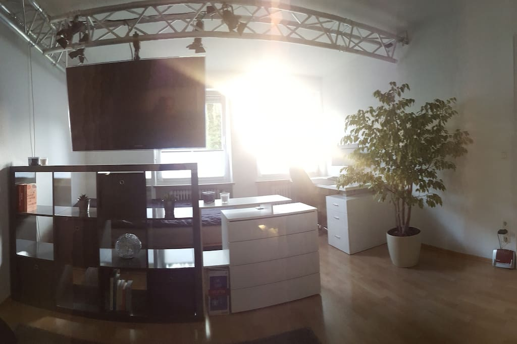 Blick vom Sofa / view from the couch