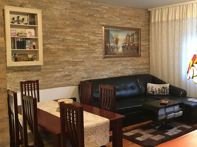 Stylish modern/vintage apartment 50m2,free parking - Novi Sad - Apartment