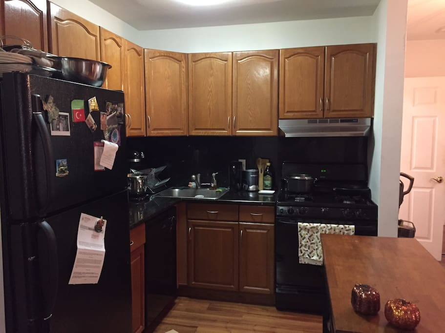 The kitchen + dishwasher