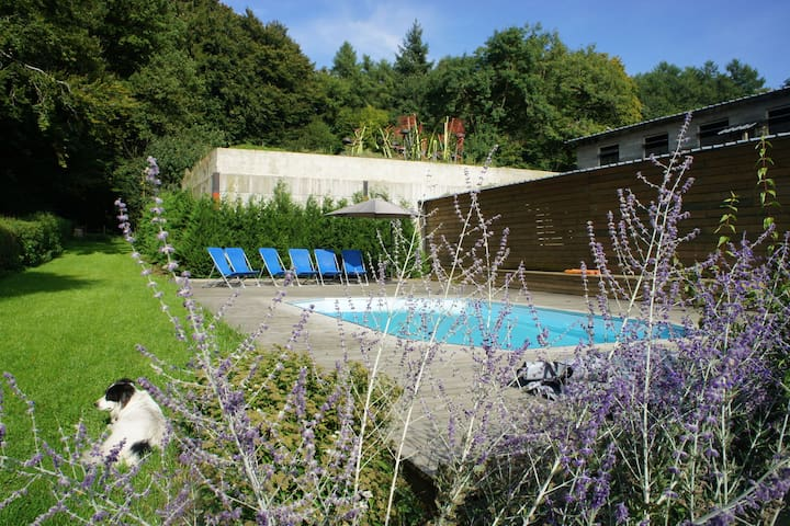 Gite for family groups with outdoor pool near Neufchateau