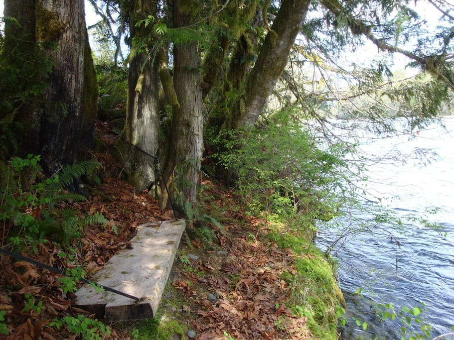 Bench alongside Skagit River