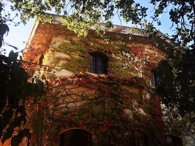 La Maison du Bonheur - Aabrine - Rumah