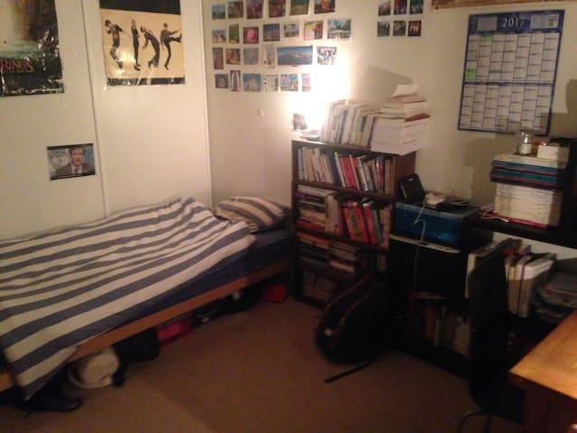 Room 1 (1 single bed)