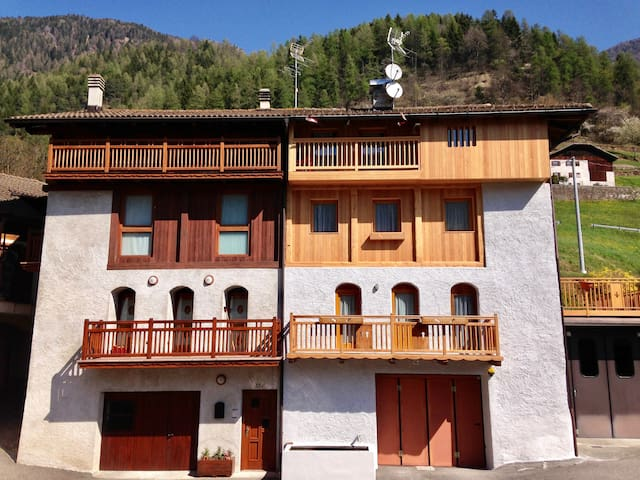 Baita vacanze Rabbi - Pracorno - Appartement