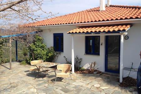 Villa Maxima - Potistika