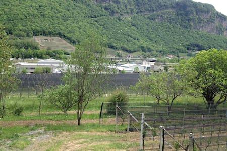 camera ammobiliata - Riva San Vitale - Byt