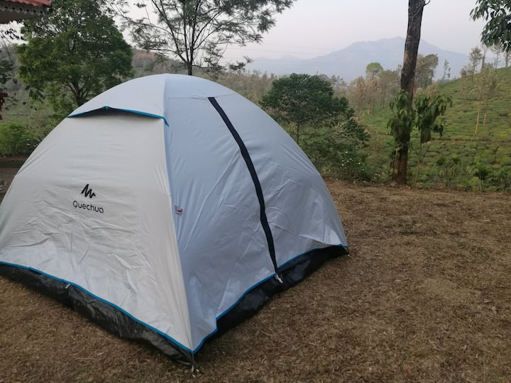Green garden Tents
