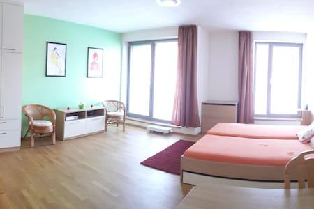 Brand new studio fully furnished - Brno - Apartment