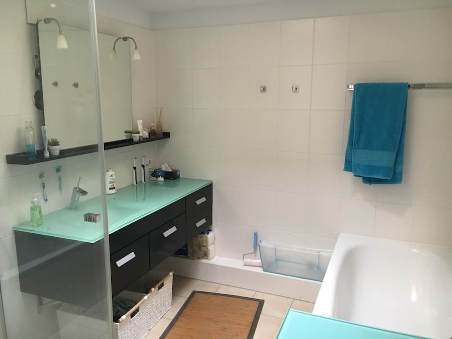 Modern, bright bathroom with Sky light as well as separate bath and shower