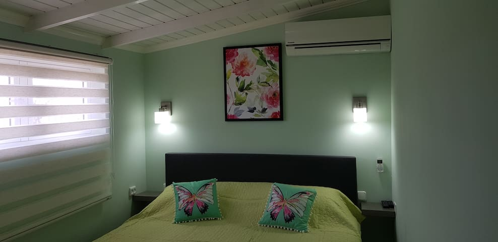 1 bedroom with queen sized box spring bed, air-conditioned and with a LED TV connected to all the streaming channels.