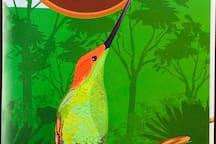 Turismo Ornitológico.