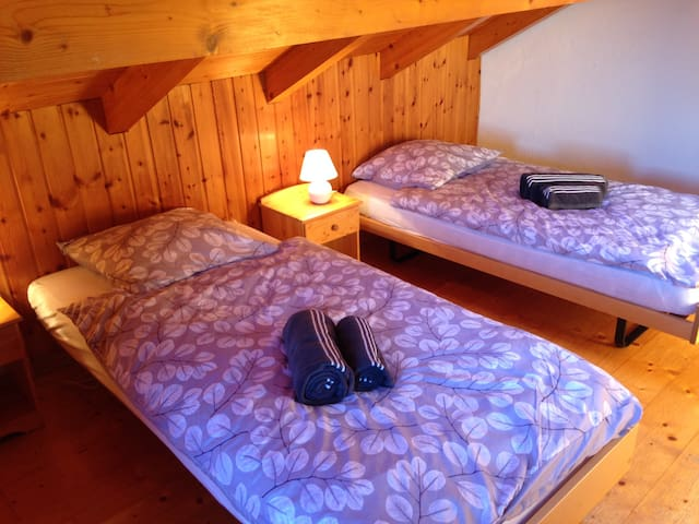 Private room with twin beds - Nendaz - House