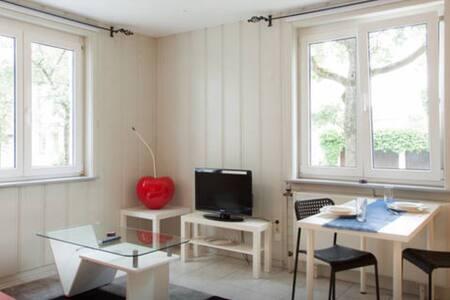 Gemütliches 2 Zimmer App., Küche, DU/WC - Stoccarda