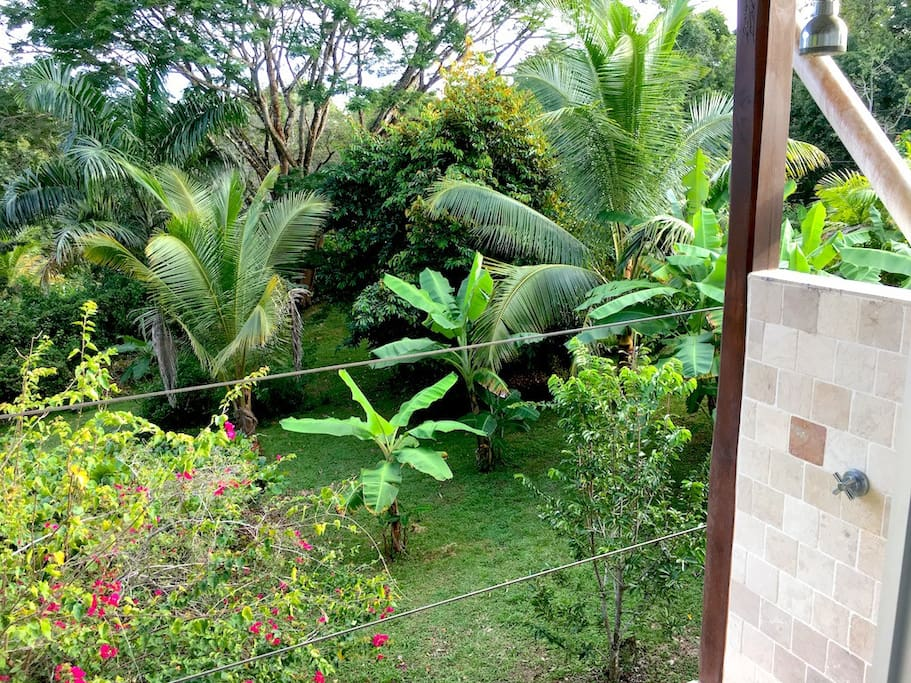 garden view from your outdoor shower